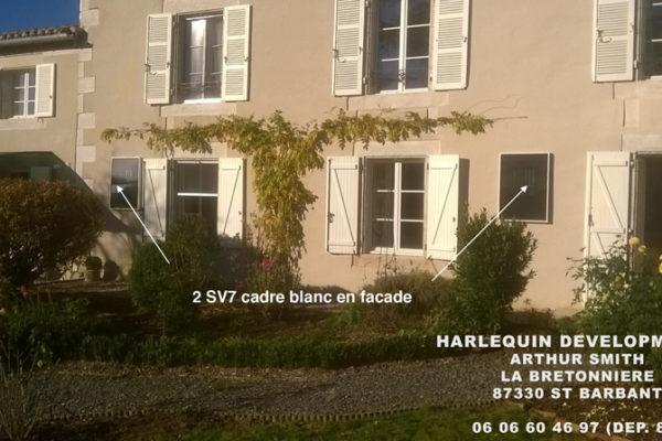 harlequin-dev-sv7